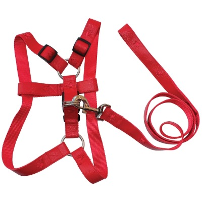 Image of Dog Harness / Lead Set